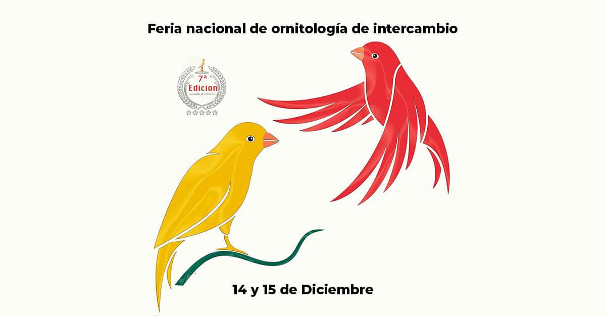 7ª Feria Nacional de ornitología en Aielo de Malferit, Valencia